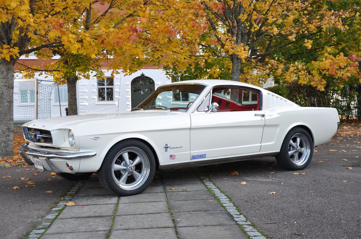 Ss G Stor on 1966 Chevrolet Corvair 500